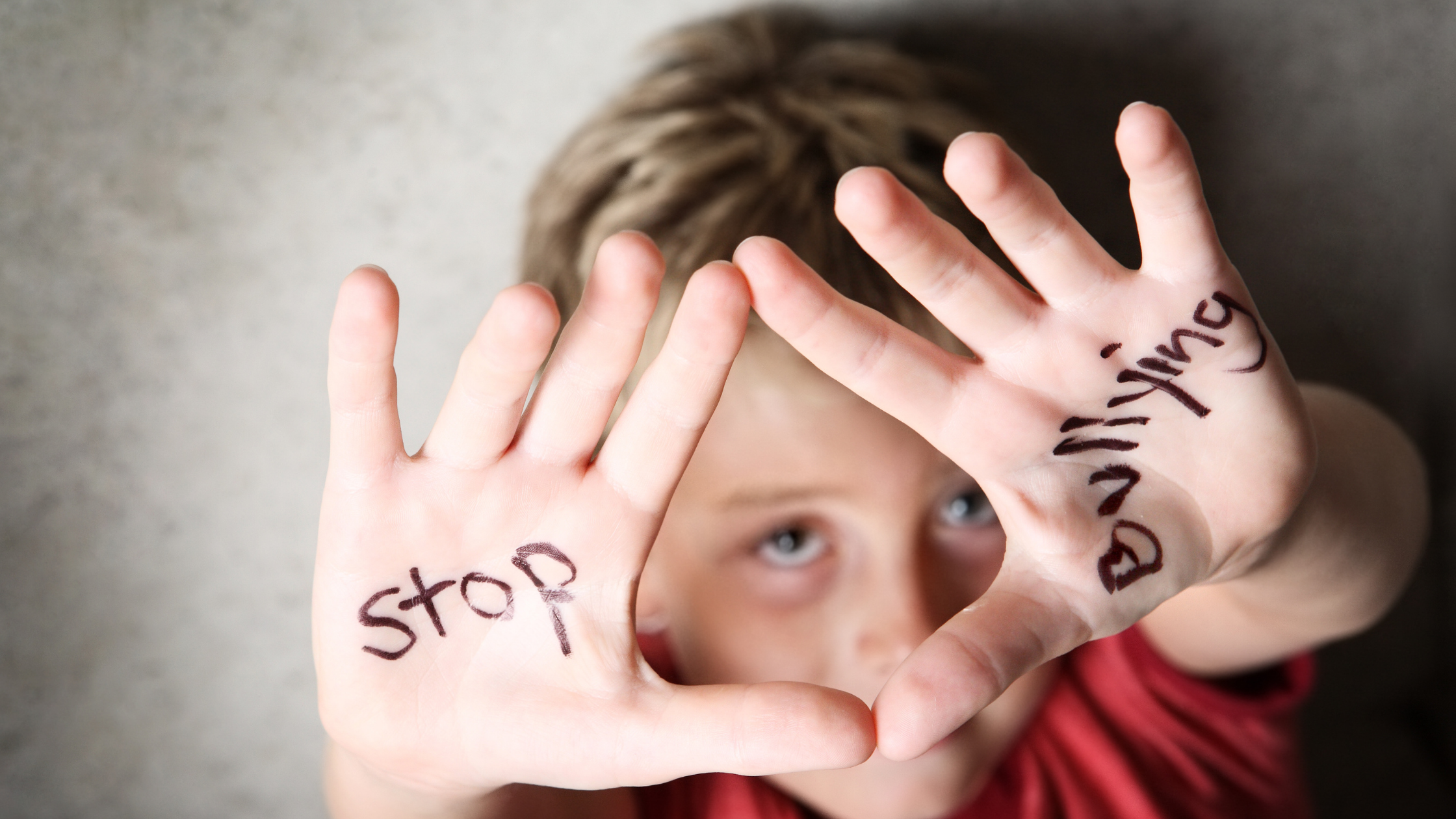 New Brunswick education minister says discipline policy needed for bullying   100.5 Fresh Radio